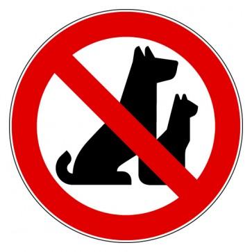 Verbotsschild Hunde verboten Draußen bleiben