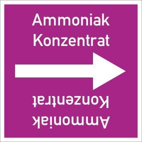 Rohrleitungskennzeichnung viereckig Ammoniak Konzentrat · Aluminium-Schild