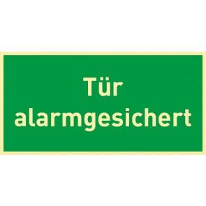 Schild Rettungszeichen Tür alarmgesichert · NACHLEUCHTEND