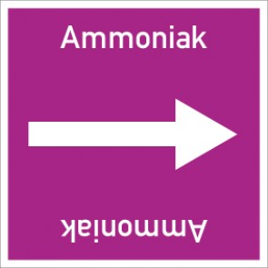 Rohrleitungskennzeichnung viereckig Ammoniak · Aluminium-Schild