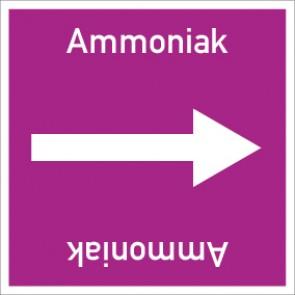 Rohrleitungskennzeichnung viereckig Ammoniak · Aufkleber