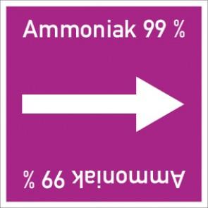 Rohrleitungskennzeichnung viereckig Ammoniak 99 % · Aluminium-Schild