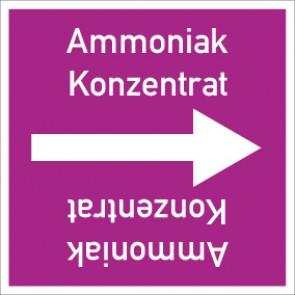 Rohrleitungskennzeichnung viereckig Ammoniak Konzentrat · Aufkleber