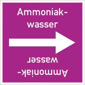 Rohrleitungskennzeichnung viereckig Ammoniakwasser · Aufkleber
