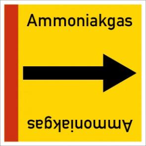 Rohrleitungskennzeichnung viereckig Ammoniakgas · Aluminium-Schild