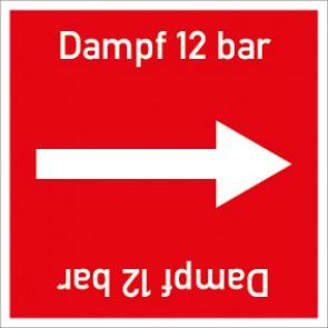 Rohrleitungskennzeichnung viereckig Dampf 12 bar · Aluminium-Schild