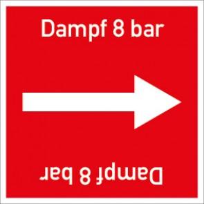 Rohrleitungskennzeichnung viereckig Dampf 8 bar · Aluminium-Schild