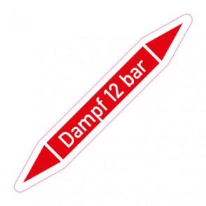 Aufkleber Rohrkennzeichnung · Rohrleitungskennzeichnung Dampf 12 bar
